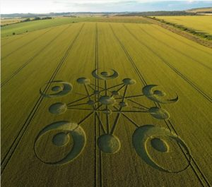 CropCirclePentagram2014